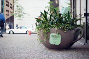Bigelow Tea Guerrilla Marketing | The Gorilla Agency