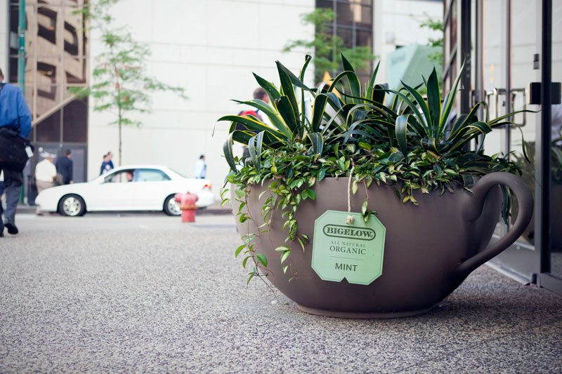 Bigelow Tea Guerrilla Marketing | The Gorilla Agency